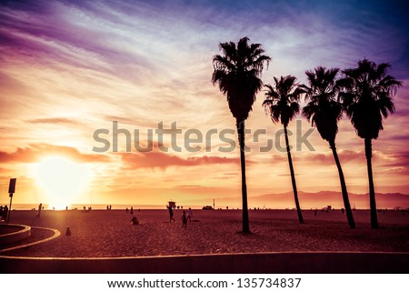 Venice Beach. Sunset. Summer concept