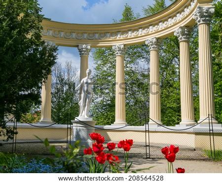 Venus in the garden - stock photo