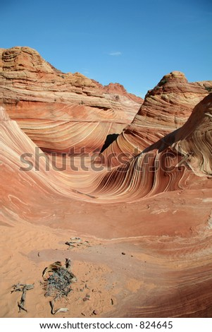 Vermilion Cliffs - The Wave Portrait