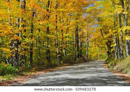 Vermont foliage, USA - stock photo