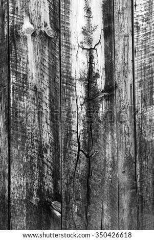 Vertical black and white wooden grain background. - stock photo
