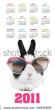 Vertical color calendar for 2011 year with rabbit in sunglasses - stock photo