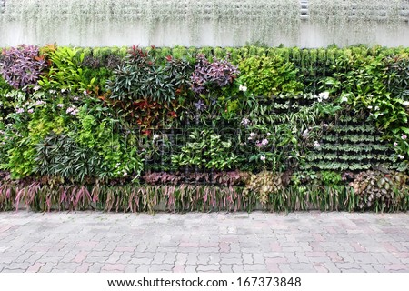 vertical garden floral - stock photo