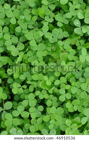 Vertical Green Clover Shamrock Background for St. Patrick's Day - stock photo