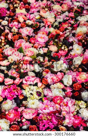 Vertical image of beautiful flowers wall background with amazing red and white roses. - stock photo