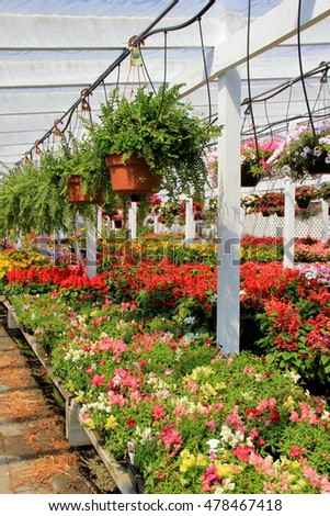 Vertical image of local nursery full of bright and colorful flats of flowers and hanging baskets for sale.