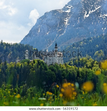 Vertical low view of Neuschwanstein Castle, Bavaria, Germany. - stock photo