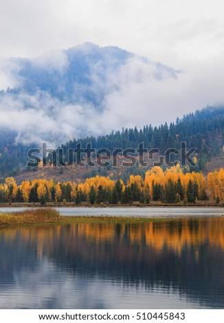 vertical orientation color image of low lying clouds, mountains, fall color and reflection in water / Fall Reflection in the Mountains with Low Clouds