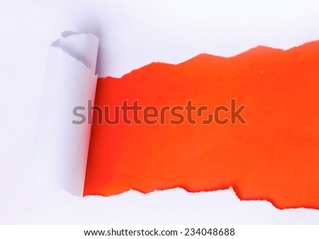 vertical ripped paper - stock photo