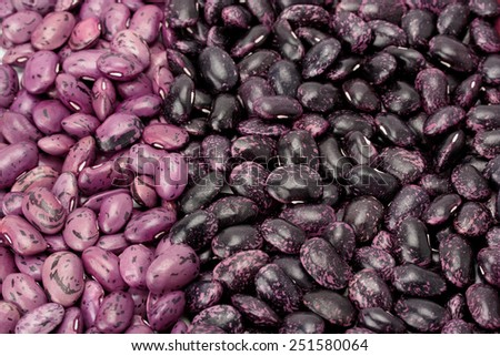 vertical row of dry beans of different varieties - stock photo