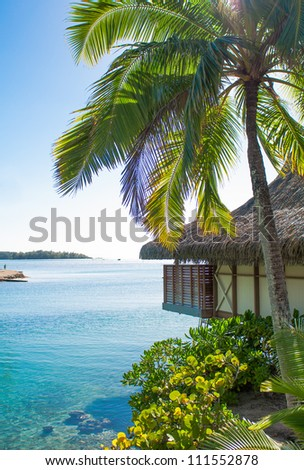 Vertical shot of bungalow and palm in Tahiti - stock photo