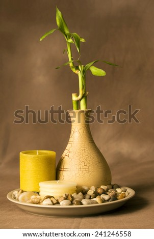 Vertical Shot Of Tranquil Scene With Bamboo And Candles - stock photo