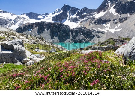 Vertical shot of turquoise Wedgemount Lake and wild alpine flowers, Whistler, BC  - stock photo
