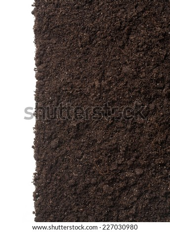 vertical soil or dirt section isolated on white background - stock photo