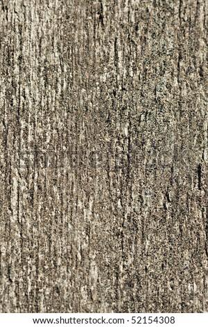 Vertical textured tree bark background - stock photo