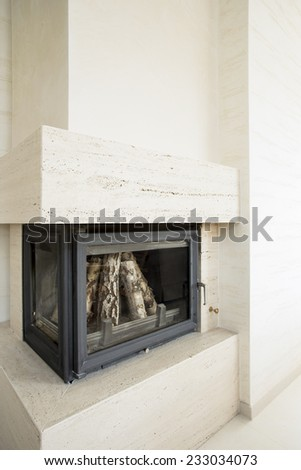 Vertical view of fireplace with wood inside
