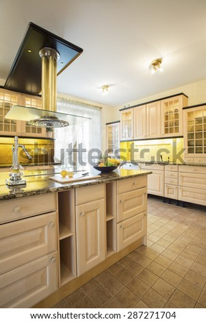 Vertical view of squeezer on countertop in luxury kitchen - stock photo