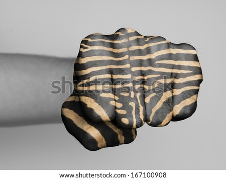 Very hairy knuckles from the fist of a man punching, zebra print - stock photo
