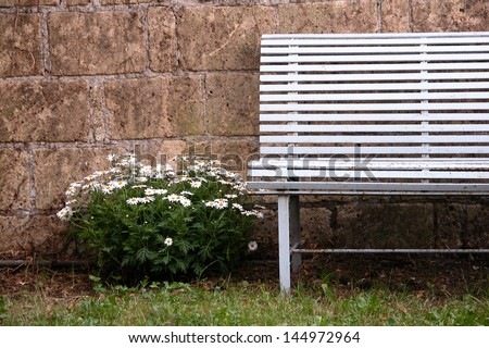 Very old bench with white flowers near the wall in nostalgic atmosphere