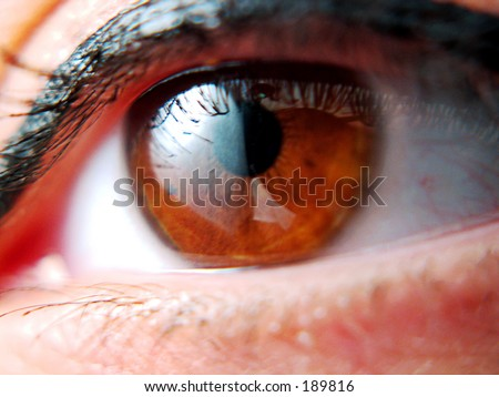 very sharp and detail macro of eye - stock photo