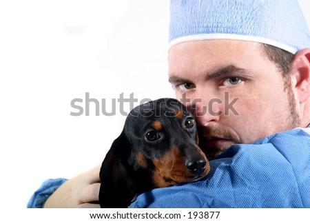 Vet and Dog - stock photo