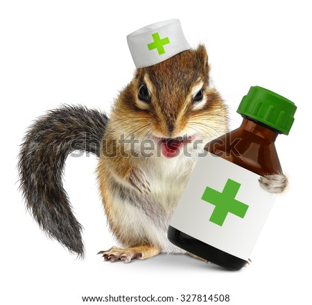 Vet concept, funny squirrel doc hold bottle medications - stock photo
