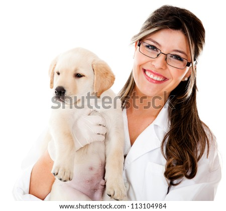 Vet holding a little dog - isolated over a white background - stock photo