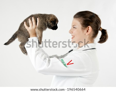 Vet holding a little puppy dog - isolated over a white background - stock photo