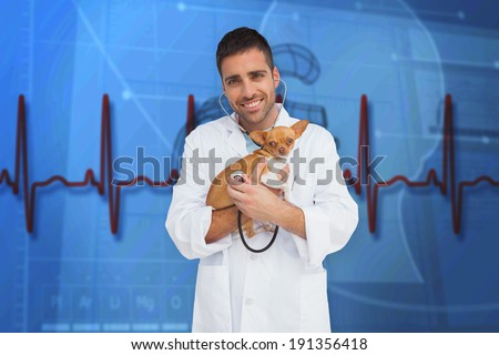 Vet holding chihuahua against blue medical background with heart diagram and ecg - stock photo