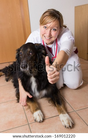 Vet kneeling with a dog on the ground