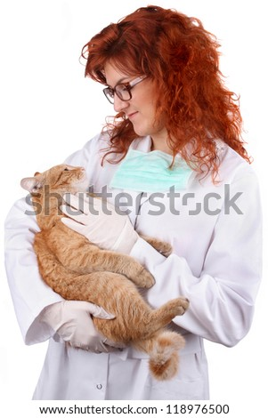 Vet looking at a cat. Studio shot, isolated on white.