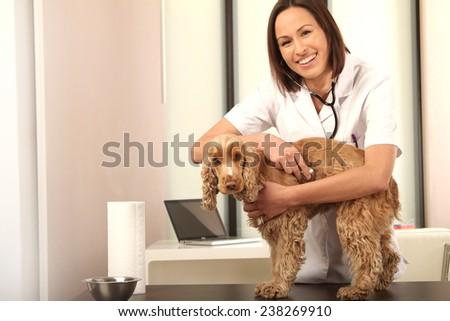 veterinarian - stock photo