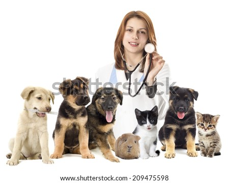 veterinarian and set of pets - stock photo