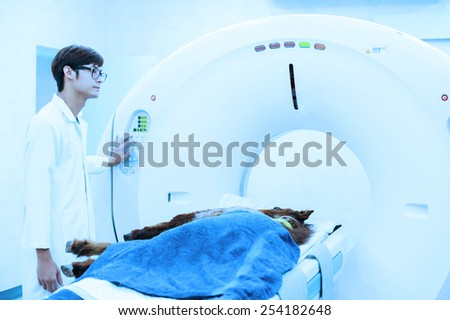 veterinarian doctor working in MRI scanner room take with blue filter - stock photo
