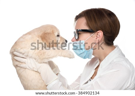 Veterinarian Examine Cute Golden retriever Puppy