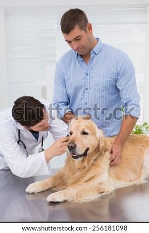 Veterinarian examining a dog with its owner in medical office