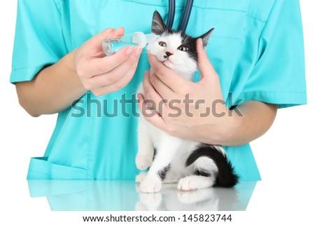 Veterinarian examining kitten isolated on white - stock photo