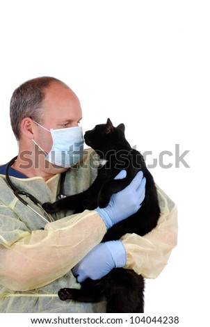 veterinarian with black cat - stock photo