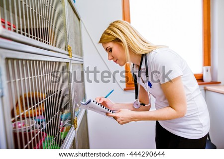 Veterinarian writing into a notepad about cats in cage - stock photo