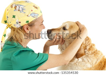Veterinary consultation and a follow a dog - stock photo