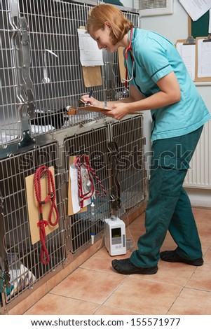 Veterinary Nurse Checking On Animals In Cages