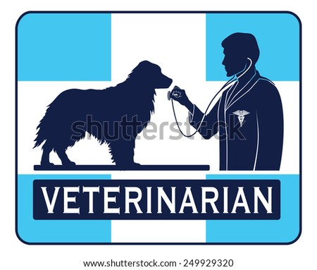 Veterinary With Dog Graphic is an illustration of a design for a vet or veterinarian. Includes images of a dog, a veterinarian with stethoscope, a veterinarian symbol and a cross shape. - stock photo