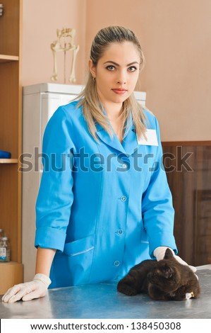 veterinary woman with cat in banian hospital - stock photo