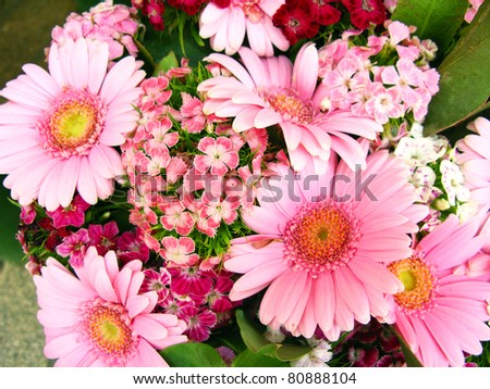 Vibrant and colorful background of flowers - stock photo