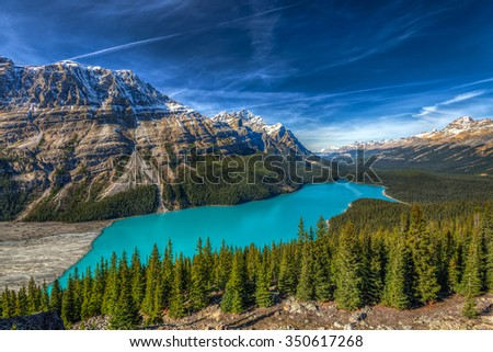 Vibrant Blue Peyto Lake from Bow summit Banff National Park, Alberta Canada