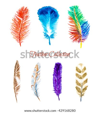 Vibrant colorful watercolor hand drawn feathers set isolated on white background - stock photo