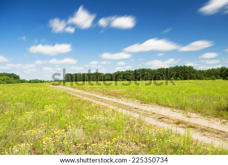 Vibrant field of wildflowers and forest.summer landscape - stock photo