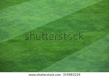 Vibrant green grass filling a field.  The grass is divided into thick vertical lines with one line containing a deep shade of green grass and the other line a lighter shade. - stock photo