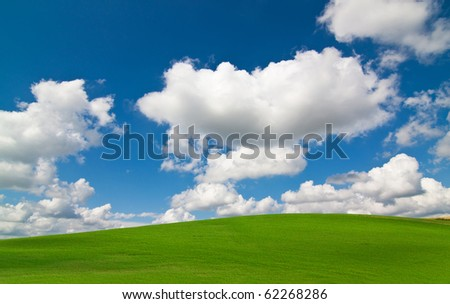 Vibrant green grass meadow landscape