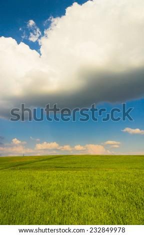 Vibrant Nature Field Landscape  - stock photo